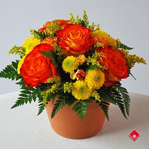 arrangement floral jaune fleuriste montr al le pot de fleurs. Black Bedroom Furniture Sets. Home Design Ideas