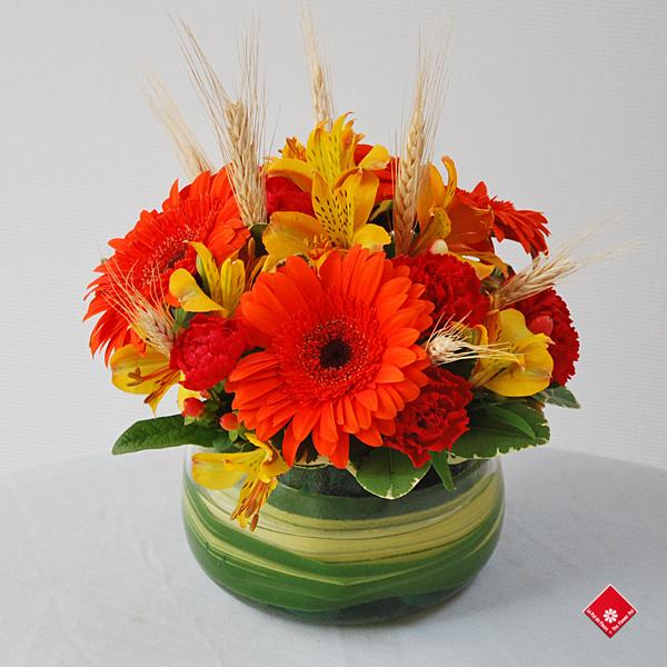 Halloween Et Octobre Fleuriste Montr Al Le Pot De Fleurs