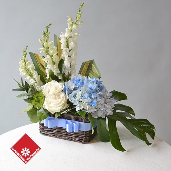 Livraison de fleurs pour la naissance d\u0027un garçon à Montréal.