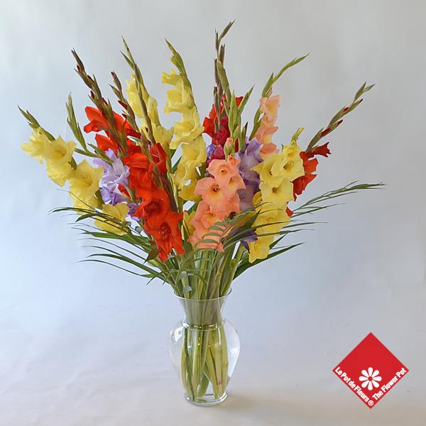 Très Bouquet de glaïeuls - Le Pot de Fleurs NK12
