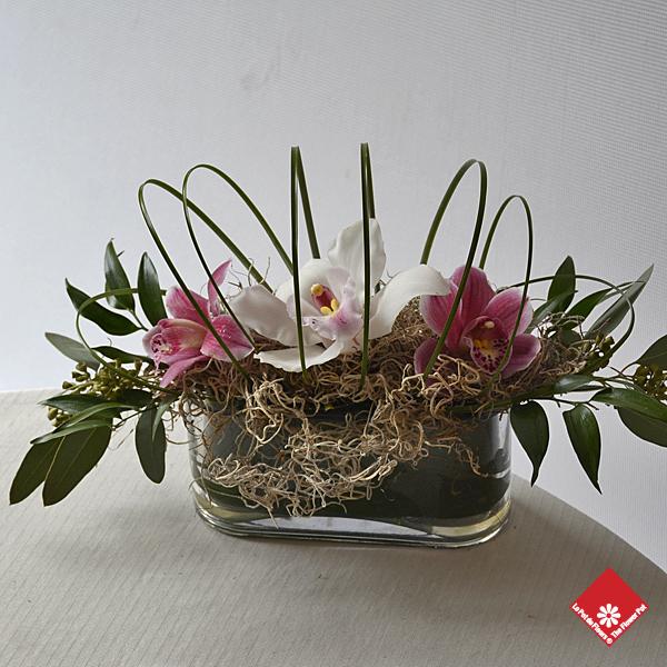 orchid es montr al fleuriste montr al le pot de fleurs. Black Bedroom Furniture Sets. Home Design Ideas